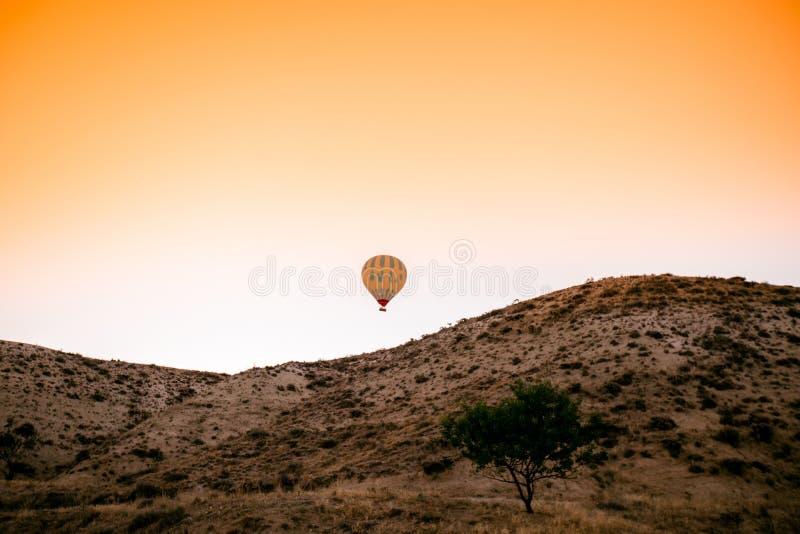 Balões de ar quente coloridos que voam sobre o vale foto de stock royalty free