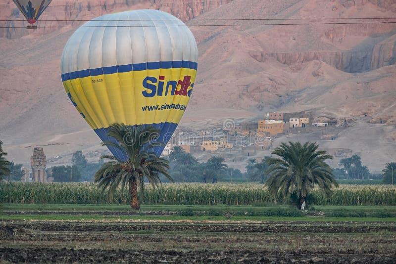 Balões de ar quente de 12/11/2018 de Luxor, Egito que aumentam no nascer do sol sobre uns oásis verdes no deserto fotografia de stock royalty free