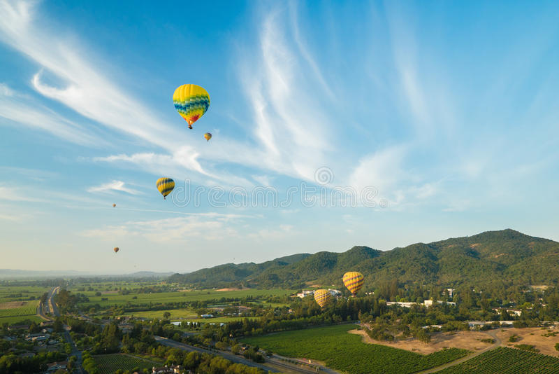 Balões de ar quente que flutuam acima dos vinhedos imagem de stock