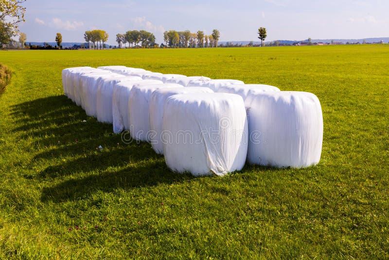 Bal av sugrör som packas i vit arkivfoton