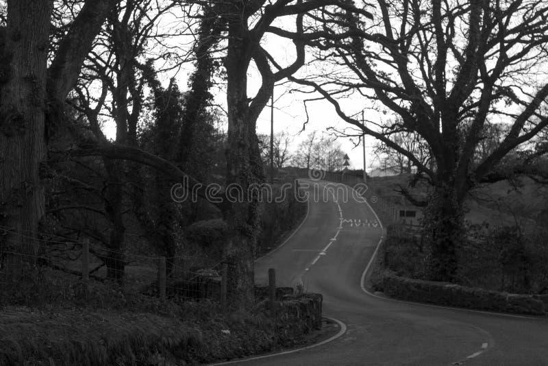 Bala till llangynogvägen, Wales royaltyfria bilder