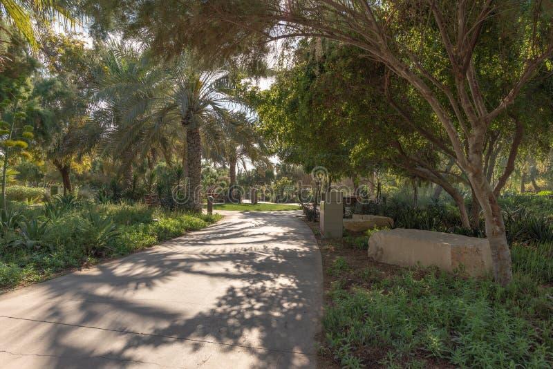 Balade romantique de matin en parc urbain de désert, Abu Dhabi photos stock