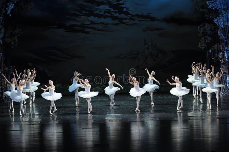 Balanço-bailado O Lago das Cisnes do enxame da cisne imagens de stock