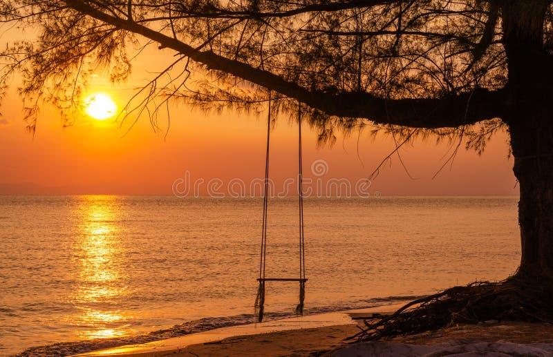 Balanço de madeira com opinião bonita do por do sol na praia do mar fotografia de stock royalty free