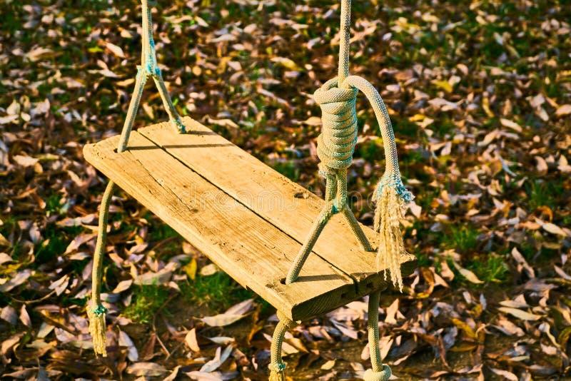 Balanço de madeira em cordas no atumn imagem de stock royalty free