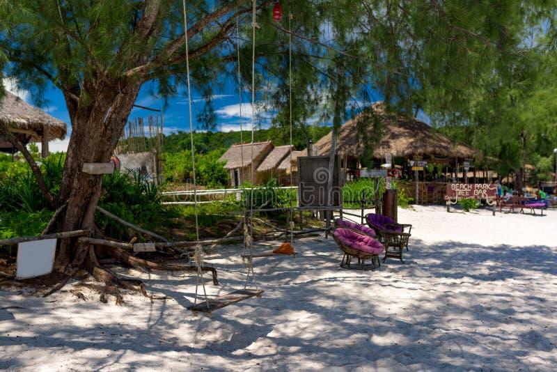 Balanço de madeira que pendura na árvore na praia tropical bonita foto de stock