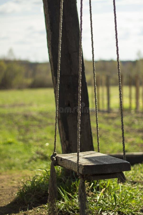 Balanço de madeira vazio no campo imagem de stock