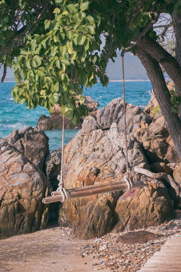 Balanço de madeira vazio que pendura de uma árvore em uma praia tropical imagens de stock