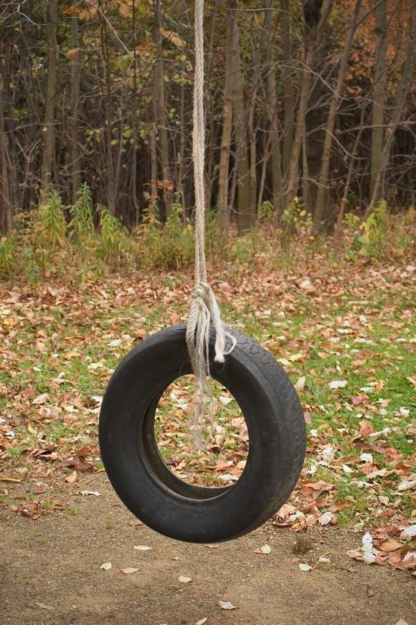 Balanço do pneu imagem de stock