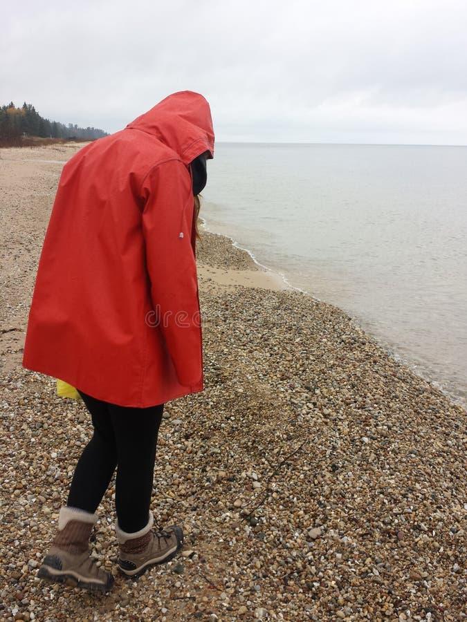 Balance a caça na costa do Lago Huron em Michigan do norte fotos de stock royalty free