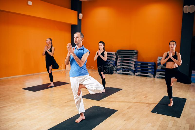 Balance exercise, female yoga group in action. Training with instructor, workout in gym. Yogi indoor stock image