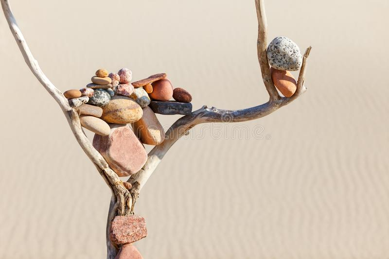 Balance of stones on a dry snag on a sand background. Zen Concept. Balance of stones on a dry snag on a sand background. Concept of harmony, balance and stock photography