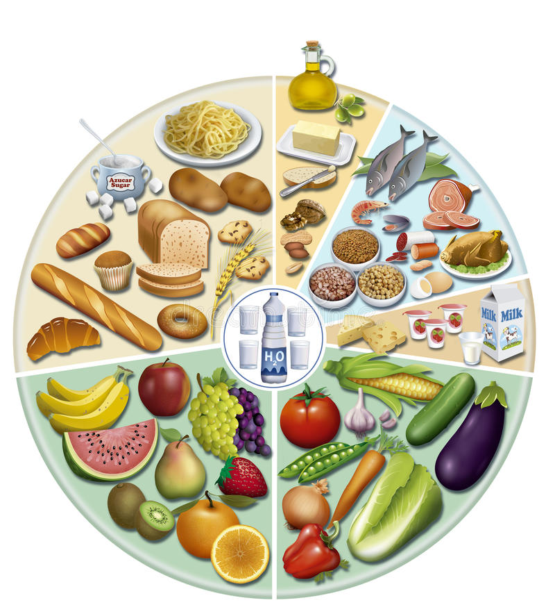 Balanced Diet Stock Images