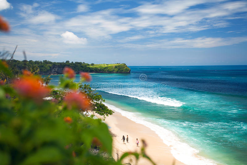 Balangan海滩用花装饰的看法在巴厘岛,印度尼西亚,亚洲 图库摄影