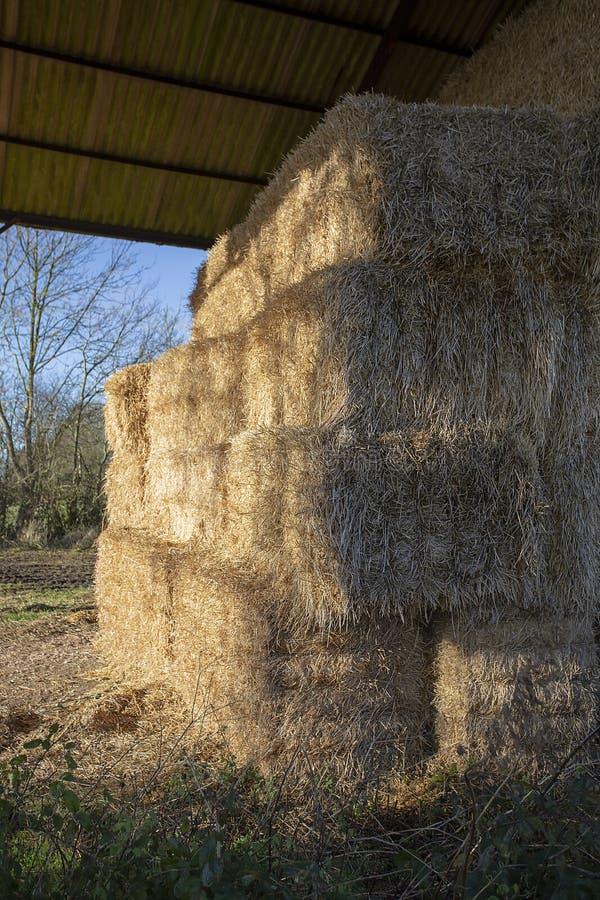 Balas de heno apiladas en granero abierto fotos de archivo