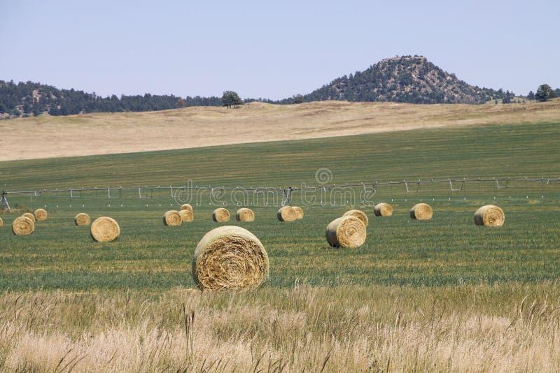Balas de heno en campo con el pivote de centro detrás foto de archivo