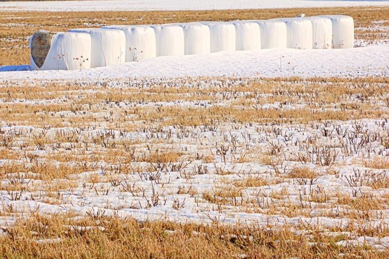 Balas de heno en invierno foto de archivo libre de regalías