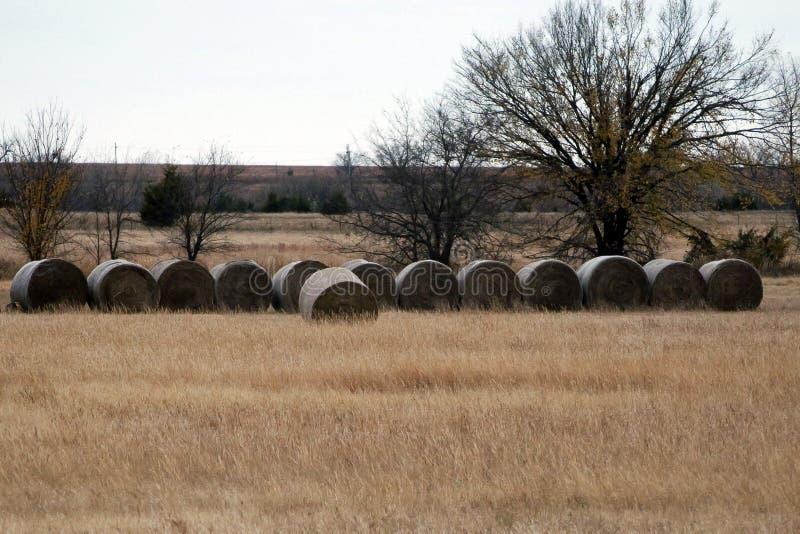 Balas de heno en prado de la hierba imágenes de archivo libres de regalías