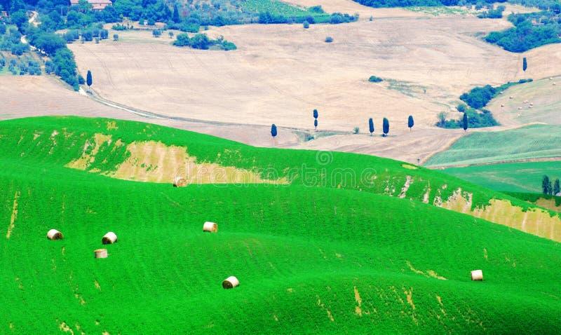Balas de heno en Toscana fotografía de archivo
