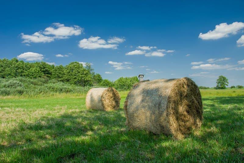 Balas de heno que mienten en la sombra de árboles en un prado, nubes blancas y un cielo azul foto de archivo