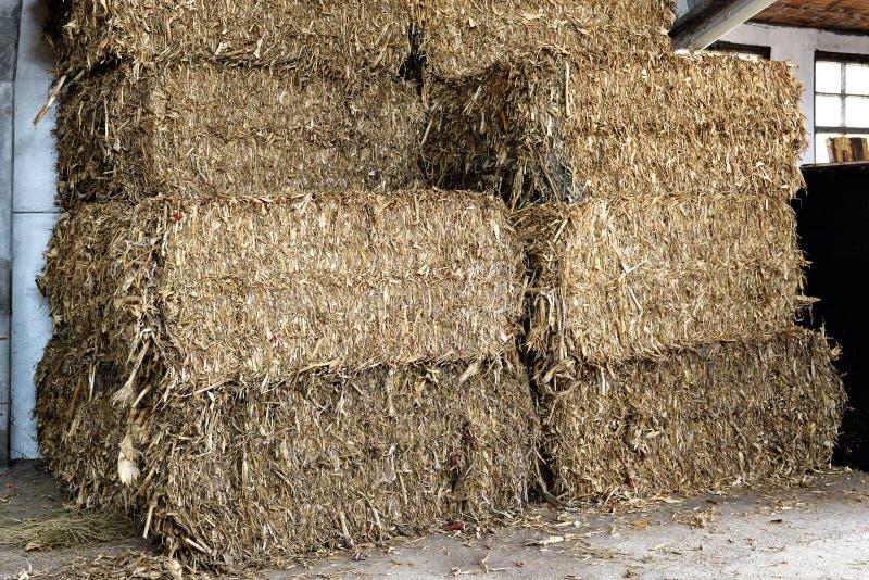 Balas de heno rectangulares apiladas en un granero fotografía de archivo