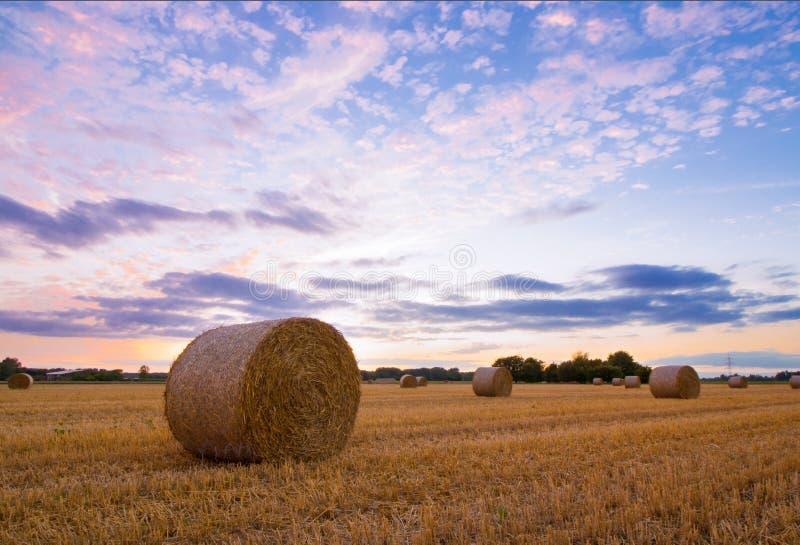 Balas de la paja después de la cosecha en el tiempo de la puesta del sol fotos de archivo libres de regalías