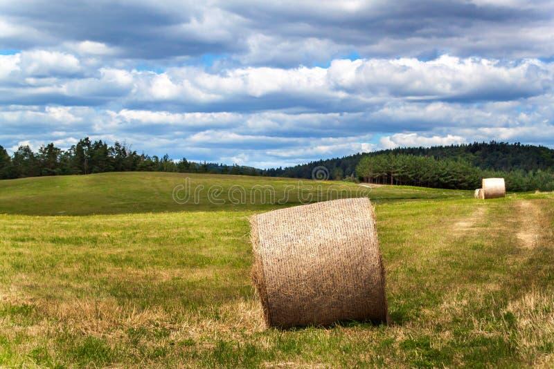 Balas de la paja en un campo en la República Checa Cosecha del heno Nubes en el cielo Granja agrícola fotos de archivo
