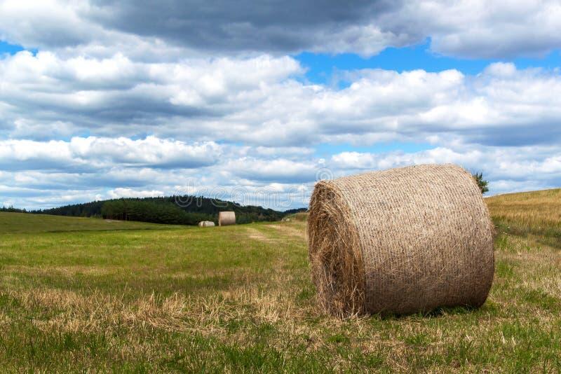 Balas de la paja en un campo en la República Checa Cosecha del heno Nubes en el cielo Granja agrícola foto de archivo