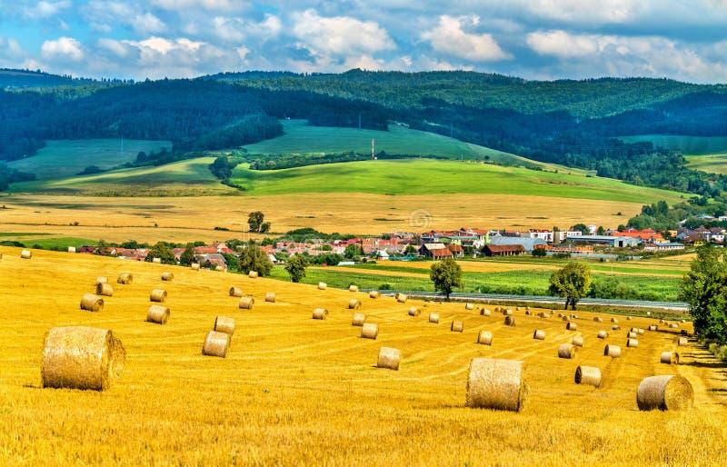 Balas de la paja en un campo de trigo en Eslovaquia fotos de archivo