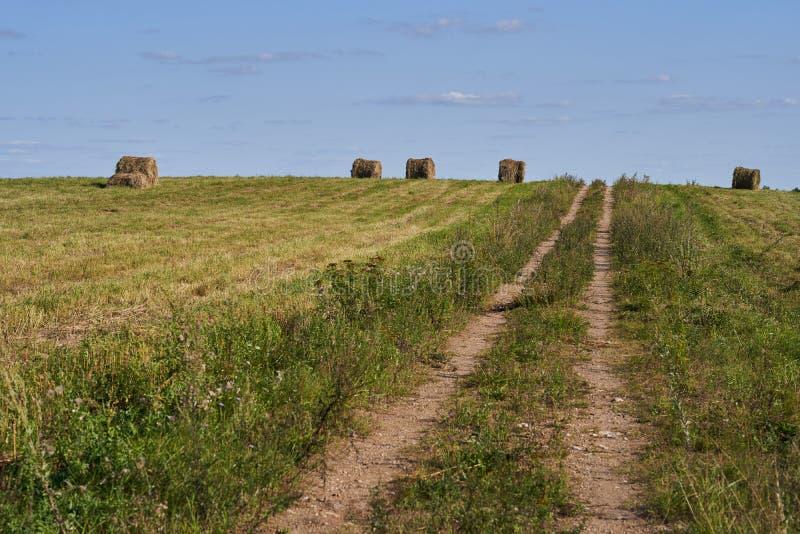 Balas de paja en un campo con un cielo azul fotografía de archivo libre de regalías
