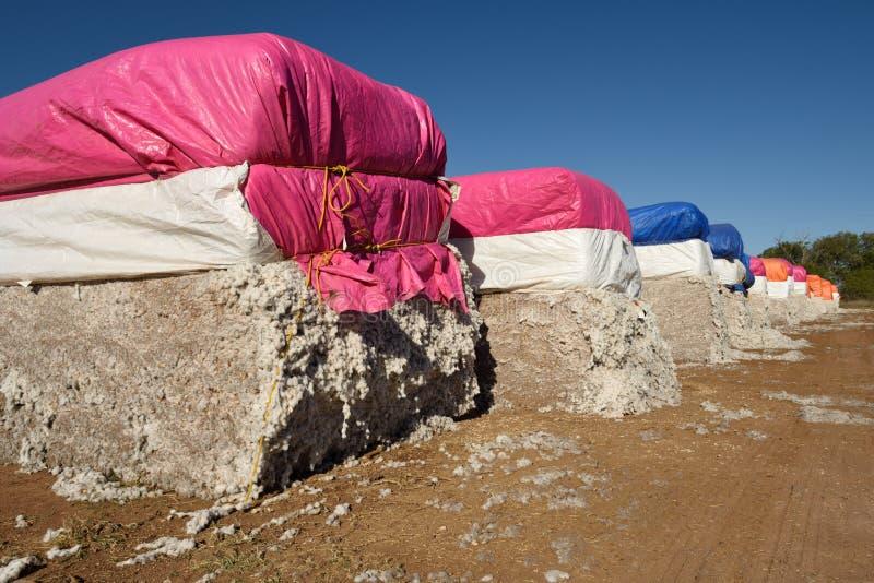 Balas recién cosechadas grandes de balas del algodón crudo listas para procesar imagen de archivo