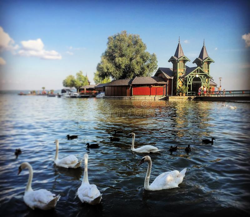 Balaton Lake royaltyfri bild
