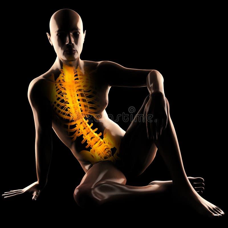 Balayage humain de radiographie illustration de vecteur