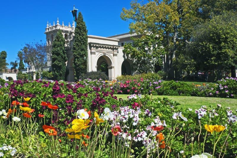 Balboa-Park mit Blumen stockbilder