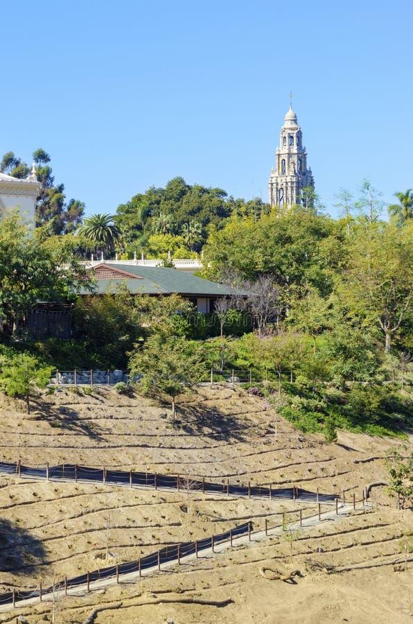 Balboa-Park, San Diego, Kalifornien lizenzfreie stockbilder
