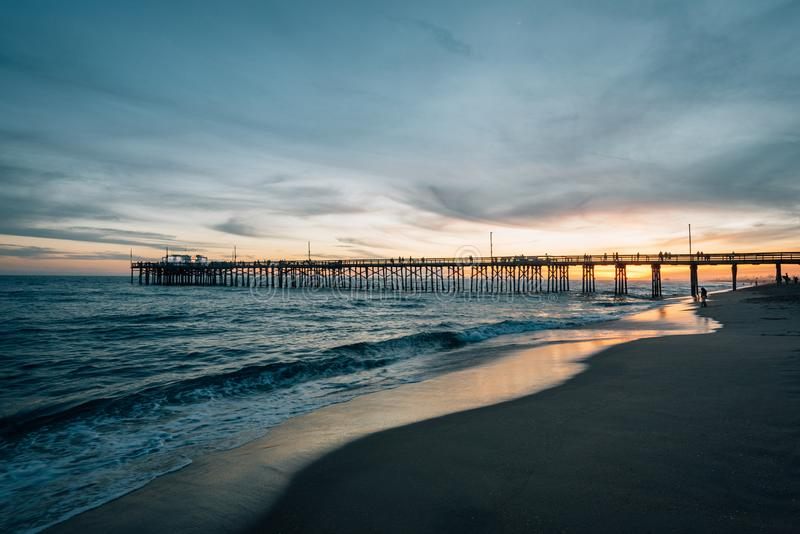 Balboapir på solnedgången, i den Newport stranden, orange län, Kalifornien royaltyfri foto