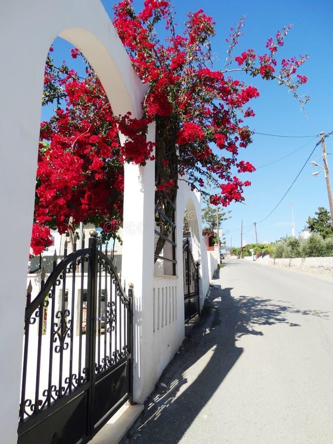 Balcão da construção do hotel de luxo e santorini Grécia do terraço imagem de stock
