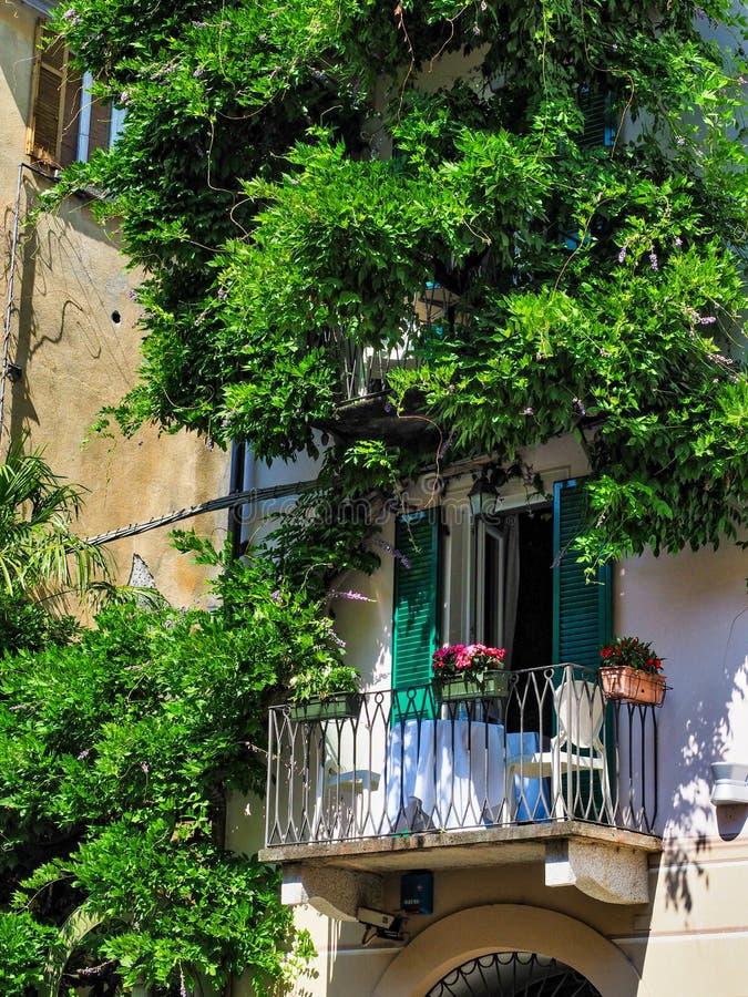 Balcón con las flores, la tabla y las sillas blancas rodeadas por las vides en el pueblo de Orta San Julio una tarde del verano fotos de archivo libres de regalías