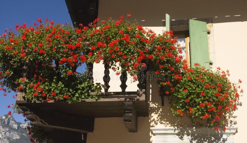 Balcón y flores, Torbole, Italia fotografía de archivo libre de regalías