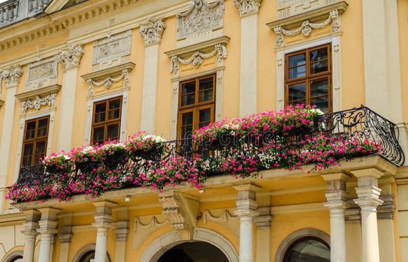 Balcon avec des fleurs sur un bâtiment historique à Kosice image libre de droits