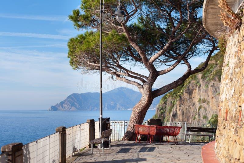 Balcone con i banchi e pino sulle rocce della città di Riomaggiore nel parco nazionale di Cinque Terre, Italia fotografie stock