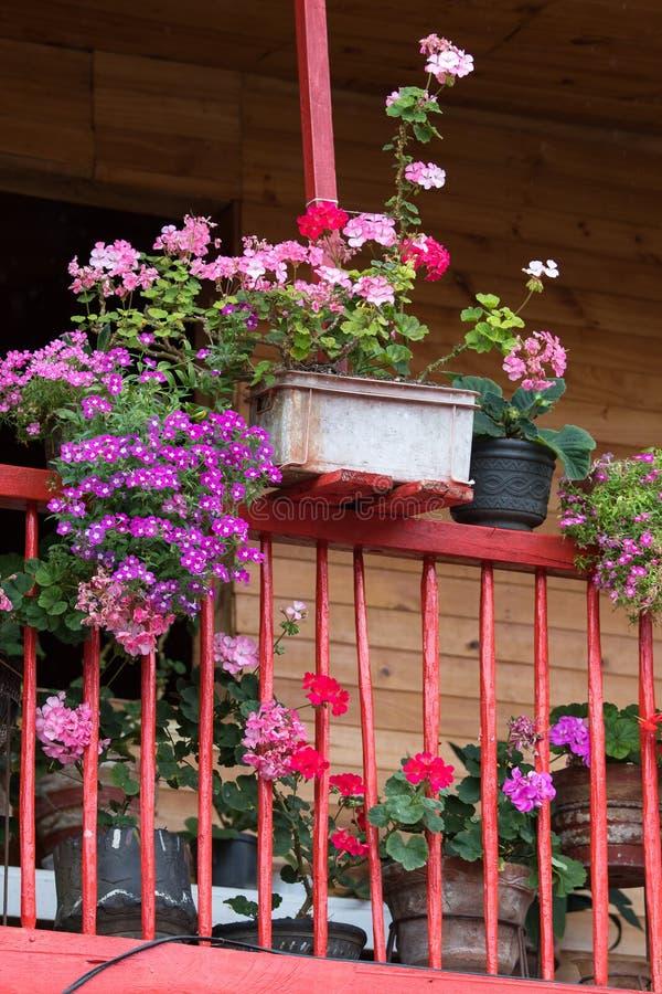 Balcone con i fiori immagine stock libera da diritti