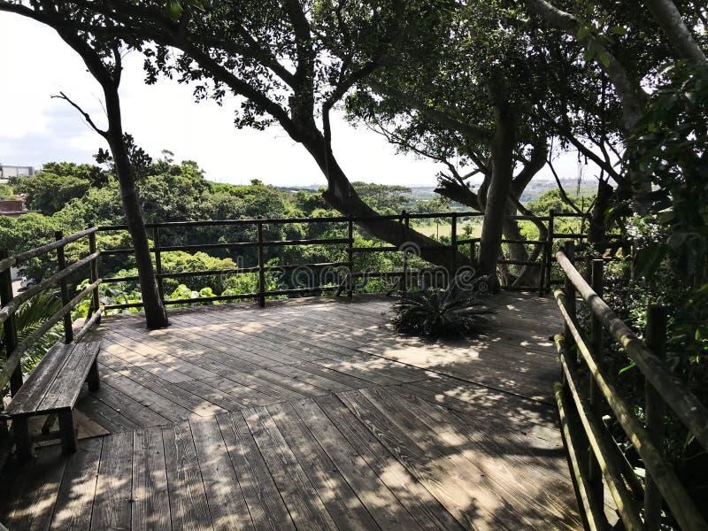 Balcone di legno della valle di Gangala in Okinawa, Giappone fotografia stock libera da diritti