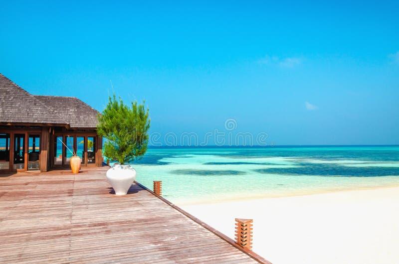 Balcone di legno di una località di soggiorno lussuosa con una vista di una spiaggia di paradiso con le palme alte immagine stock