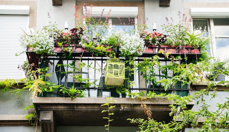 Balcone francese con i fiori multipli in vasi fotografie stock libere da diritti