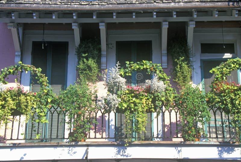 Balcone nel quartiere francese, New Orleans, Luisiana immagine stock