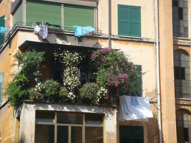 Balcony covered by the vegetation in the old popular district of the Garbatella to Rome in Italy. Balcony completely covered. Old damaged yellow building royalty free stock image