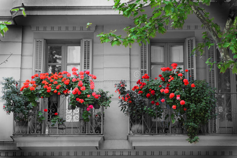 Balcony and Flowers stock photography
