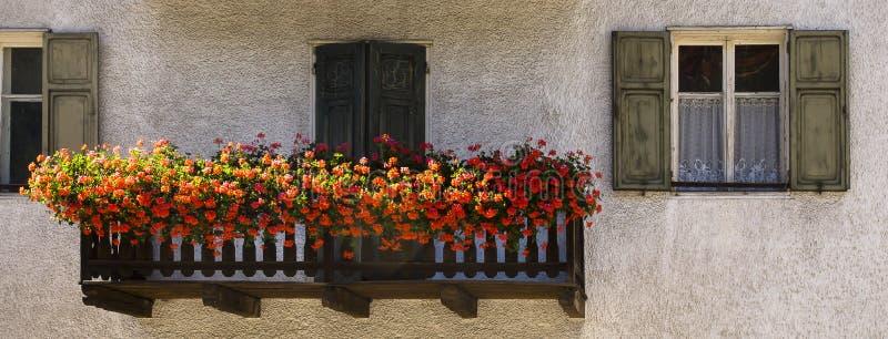 Balcony with flowers, Nova Levante, Italy stock photography