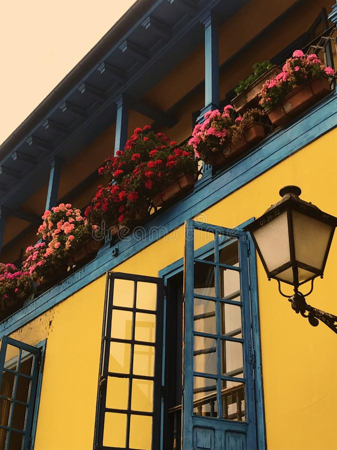 Balcony With Pink and Red Petaled Flowers royalty free stock photo